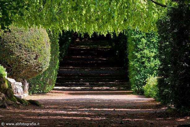 Scorcio Giardini Di Villa Barbarigo Valsanzibio