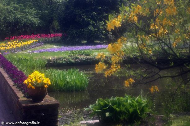 Laghetto giardini di villa taranto verbania for Laghetto i giardini